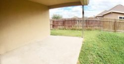 207 N 17TH ST HIDLAGO TEXAS 78557